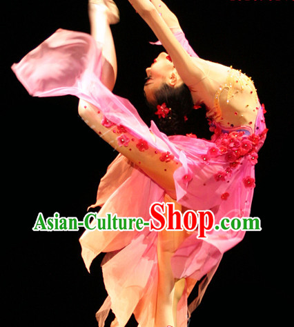 Stage Performance Silk Plum Blossom Dance Costumes Complete Set for Women