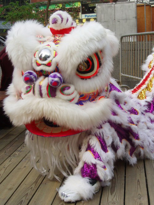 Lion Dance Clothes