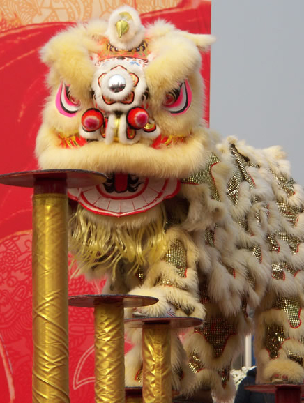 Lion, Dragon Dance Clothes