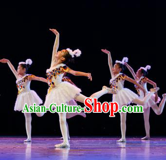 Traditional Chinese Ballet Dance Costume, Chinese Modern Dance Dress Clothing for Kids