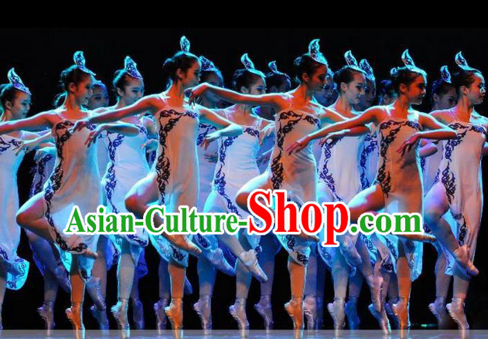 Traditional Chinese Classic Stage Performance Dance Costume, Chinese Ballet Dance Clothing for Women